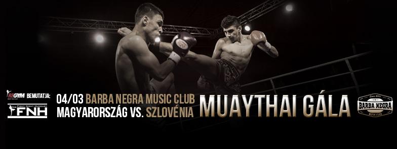 Fight Night Hungary - Ülőjegy